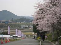 松野町Img_1436