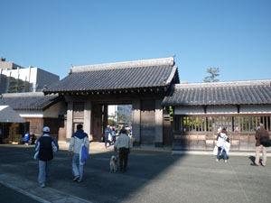 Tokushima2010_1